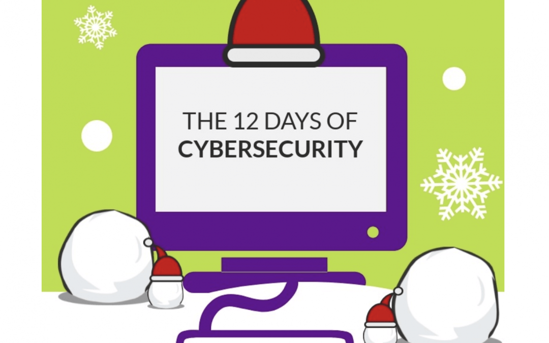 12 Days of Cybersecurity