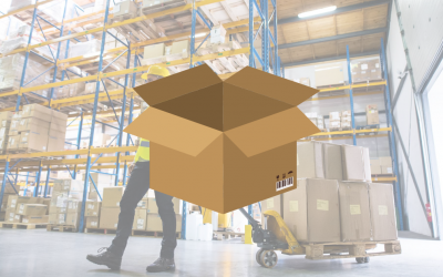 Pegasus Opera 3 – Automate the Connection Between Stock and Warehouses
