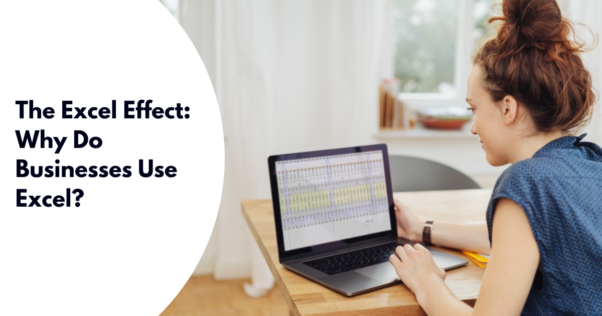 The Excel Effect_ Why Do Businesses Use Excel