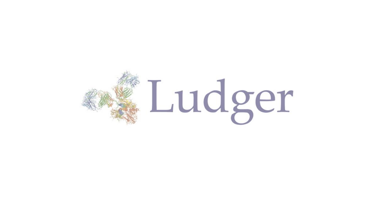 Ludger Case Study Image