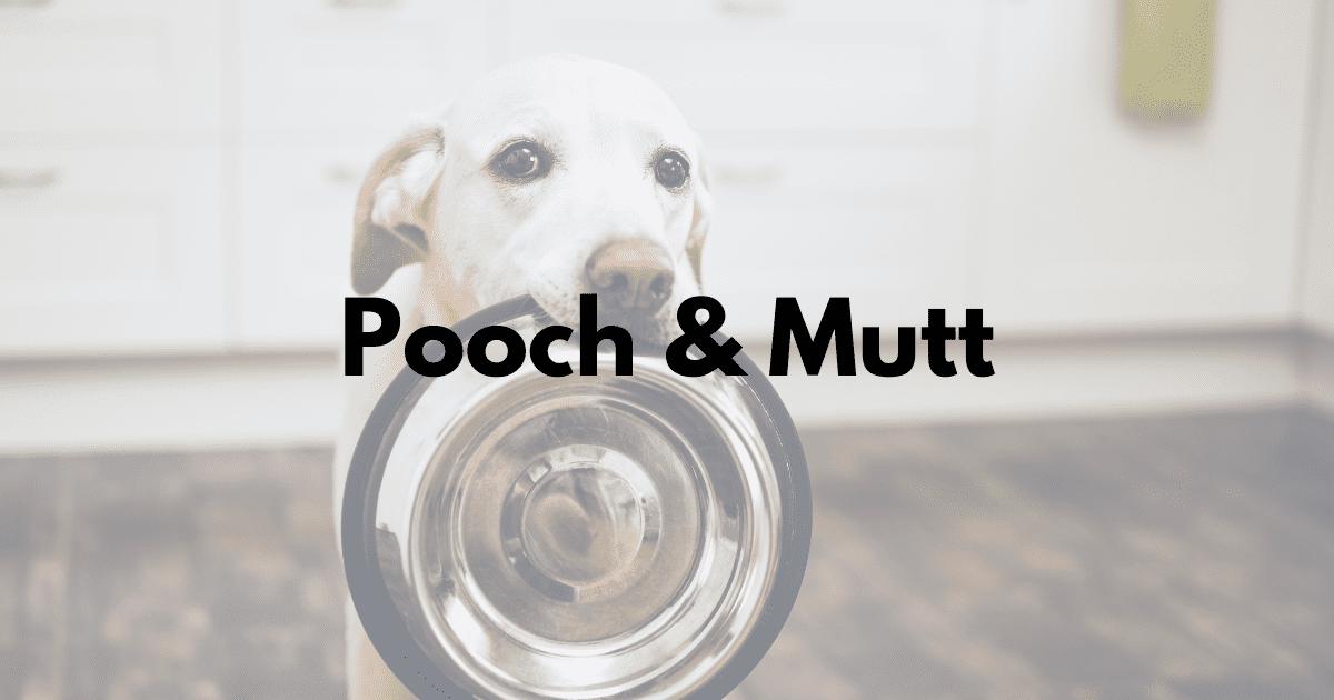 Pooch & Mutt Case Study Image